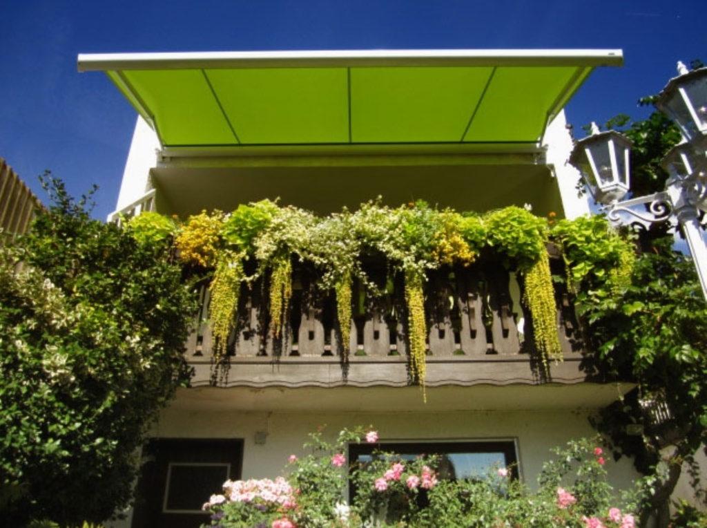 Markise Grün Haus Eigentum | SAGA Raumausstattung Aschaffenburg | Gardinen, Bodenbelag, Sonnenschutz, Pergola, Rolladen, Insektenschutz und Wasserschaden